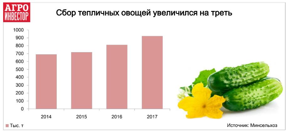 Сбор тепличных овощей увеличился на треть