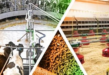 Smart Farm / Умная ферма— выставка оборудования, кормов иветеринарной продукции для животноводства иптицеводства