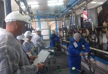 Партнерский материал. 27 Всероссийский конкурс операторов машинного доения прошел в Башкортостане