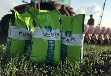 Партнерский материал. «Евралис» анонсирует строительство семенного завода в России