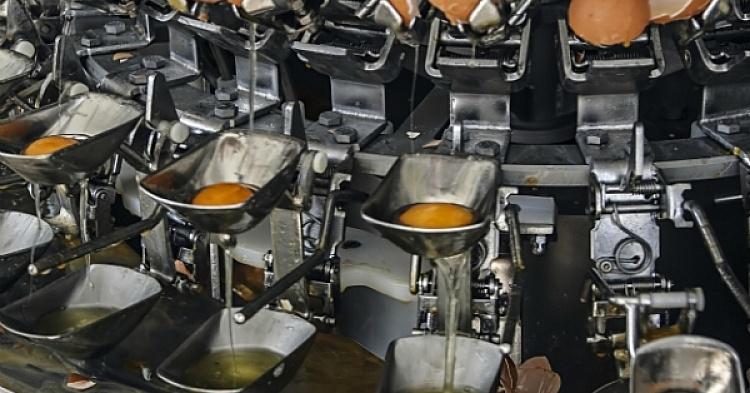 Переработка яичной скорлупы