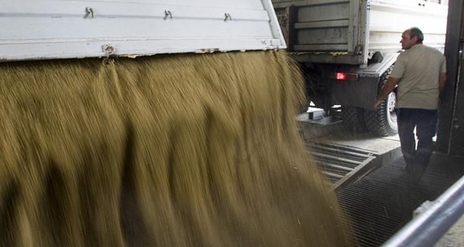 Партнерский материал. В сезоне-2019/20 Trucker намерен перевезти более 1 млн тонн зерна