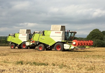 Партнерский материал. Техника CLAAS обеспечивает до 30% рентабельности при возделывании озимых пшеницы и рапса