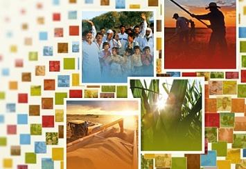 Monsanto опубликовала отчет об устойчивом развитии за 2014 год
