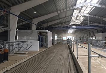 Партнерский материал. В Московской области появилась первая роботизированная ферма c оборудованием «ДеЛаваль»