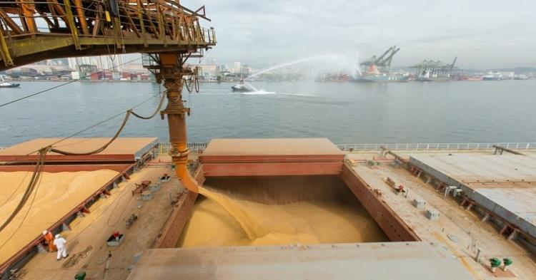 Топ-30 экспортеров зерна. Рынок разгрузили на 53 млн тонн