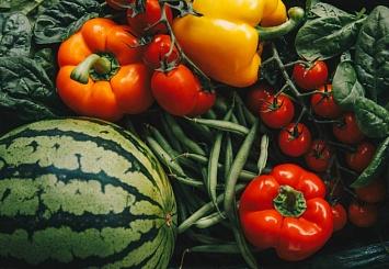 Партнерский материал. KWS выходит на рынок семян овощных культур и приобретает Pop Vriend Seeds