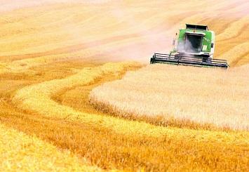 Партнерский материал. Приглашаем на конференцию «Актуальные вопросы экспорта зерна»
