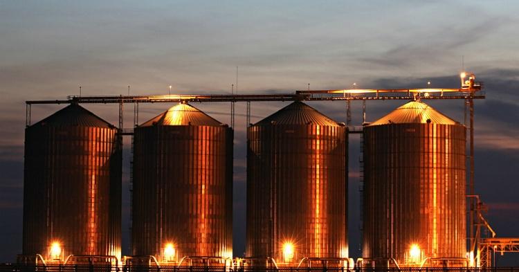 Стандарт хранения зерна семенного завода агрофирмы