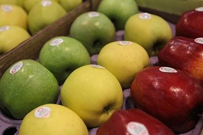 Торговля продовольствием: экспорт растет, импорт тоже