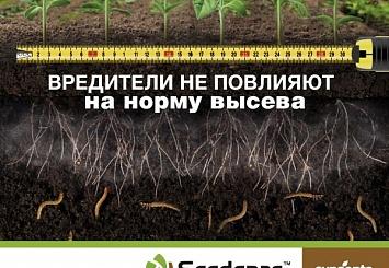 Партнерский материал. КРУЙЗЕР® ФОРС-Технология обработки семян подсолнечника