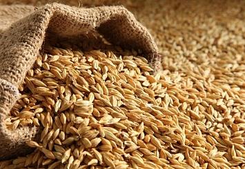 Партнерский материал. «АддконXF Суперфайн» - гарантия сохранности кормов и сырья