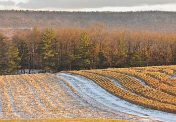 Партнерский материал. Подготовка к сезону-2019: как «Агроаналитика» помогает планировать сельхозоперации