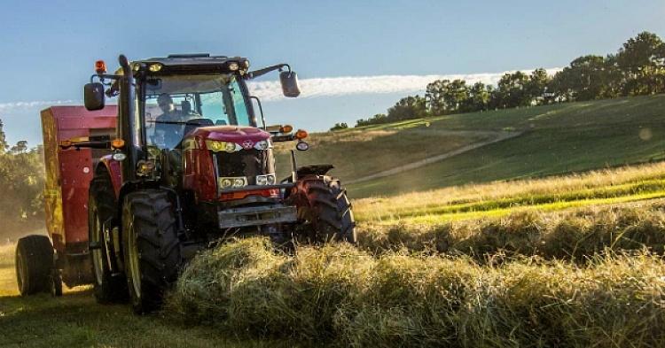 Проверка качества работы машин для прессования сена